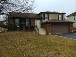 Photo of 1180 Hygate Drive, ROSELLE, IL 60172 (MLS # 10516406)