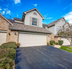 Photo of 8746 Golden Rose Drive, ORLAND PARK, IL 60462 (MLS # 10519498)