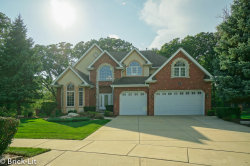 Photo of 11936 Cannon Road, ORLAND PARK, IL 60467 (MLS # 10519555)