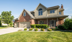 Photo of 8143 Parkview Lane, FRANKFORT, IL 60423 (MLS # 10521790)