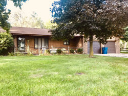 Photo of 508 Short Street, CORNELL, IL 61319 (MLS # 10521976)