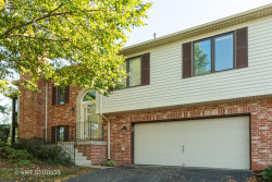 Photo of 11201 Cameron Parkway, ORLAND PARK, IL 60467 (MLS # 10523831)