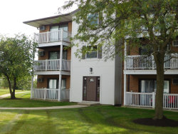 Photo of 141 Gregory Street, Unit Number 8, Aurora, IL 60504 (MLS # 10533935)