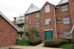 Photo of 1353 Cunat Court, Unit Number 2C, Lake In The Hills, IL 60156 (MLS # 10541606)