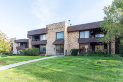 Photo of 1411 N Sterling Avenue, Unit Number 101, Palatine, IL 60067 (MLS # 10543675)