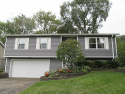 Photo of 12 Linden Street, Lake In The Hills, IL 60156 (MLS # 10544182)