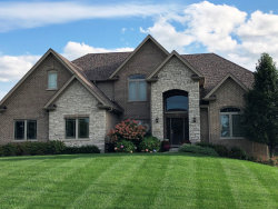 Photo of 24834 W Pine Cone Lane, Plainfield, IL 60586 (MLS # 10549404)