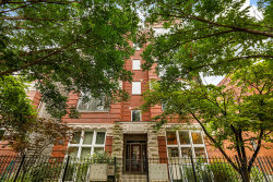 Photo of 2127 W Rice Street, Unit Number 2W, Chicago, IL 60622 (MLS # 10549738)