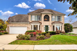 Photo of 13348 Vicarage Drive, Plainfield, IL 60585 (MLS # 10557380)