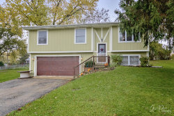 Photo of 1403 Lakeview Street, Johnsburg, IL 60051 (MLS # 10562489)