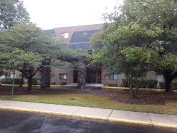 Photo of 239 N Mill Road, Unit Number 308, Addison, IL 60101 (MLS # 10563974)