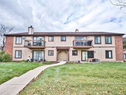 Photo of 756 Rodenburg Road, Unit Number 2A, Roselle, IL 60172 (MLS # 10565697)