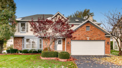 Photo of 1520 Crowfoot Circle S, Hoffman Estates, IL 60169 (MLS # 10566863)