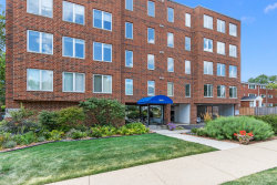 Photo of 355 W Miner Street, Unit Number 3D, Arlington Heights, IL 60005 (MLS # 10568494)