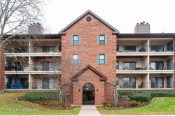 Photo of 651 Hapsfield Lane, Unit Number 300, Buffalo Grove, IL 60089 (MLS # 10568676)