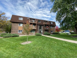 Photo of 19380 Wolf Road, Unit Number 11, Mokena, IL 60448 (MLS # 10568829)