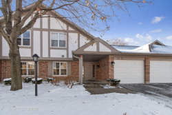 Photo of 271 Coventry Circle, Unit Number 271, Vernon Hills, IL 60061 (MLS # 10569990)