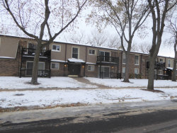 Photo of 268 N Carter Street, Unit Number 102, Palatine, IL 60067 (MLS # 10572662)