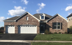 Photo of 16050 S Selfridge Circle, Plainfield, IL 60586 (MLS # 10573607)