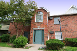 Photo of 1384 Cunat Court, Unit Number 1C, Lake In The Hills, IL 60156 (MLS # 10573621)