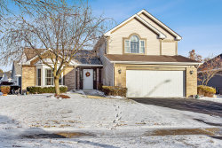 Photo of 100 S Palmer Drive, Bolingbrook, IL 60490 (MLS # 10574011)