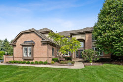 Photo of 1005 Marble Court, Lake In The Hills, IL 60156 (MLS # 10574017)