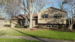 Photo of 501 Silbury Court, McHenry, IL 60050 (MLS # 10574662)
