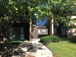 Photo of 6158 Knoll Way Drive, Unit Number 104, Willowbrook, IL 60527 (MLS # 10574734)