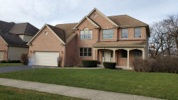 Photo of 11864 Winding Trails Drive, Willow Springs, IL 60480 (MLS # 10574833)