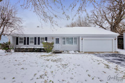 Photo of 4016 W Orleans Street, McHenry, IL 60050 (MLS # 10575195)