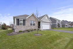 Photo of 27106 Ashgate Crossing, Plainfield, IL 60585 (MLS # 10575513)