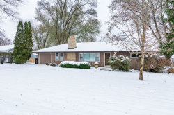 Photo of 608 S Orchid Path, McHenry, IL 60050 (MLS # 10575575)