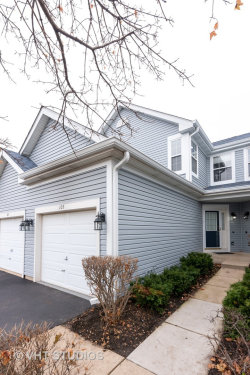Photo of 105 Northlight Passe, Lake In The Hills, IL 60156 (MLS # 10576145)