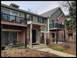 Photo of 1531 Raymond Drive, Unit Number 204, Naperville, IL 60563 (MLS # 10583529)