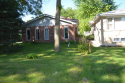Photo of 109 Spring Street, Willow Springs, IL 60480 (MLS # 10584544)