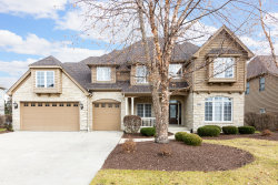 Photo of 5208 Bamboo Lane, Naperville, IL 60564 (MLS # 10585057)