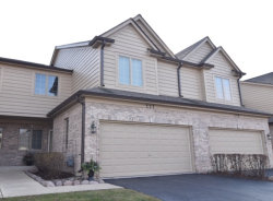 Photo of 227 Winding Trails Drive, Willow Springs, IL 60480 (MLS # 10586210)