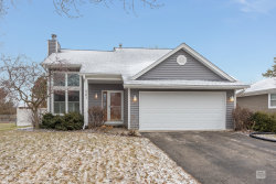Photo of 501 Pinewood Drive, North Aurora, IL 60542 (MLS # 10587316)