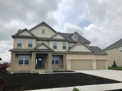 Photo of 3851 Mahogany Lane, Naperville, IL 60564 (MLS # 10589165)
