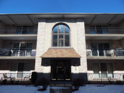 Photo of 6252 S Gullikson Road, Unit Number 3S, Chicago, IL 60638 (MLS # 10592642)