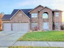 Photo of 25737 Sunnymere Drive, Plainfield, IL 60585 (MLS # 10597292)