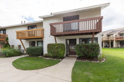 Photo of 75 Michigan Court, Vernon Hills, IL 60061 (MLS # 10604419)