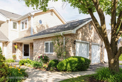 Photo of 11356 Lakebrook Court, Orland Park, IL 60467 (MLS # 10606480)