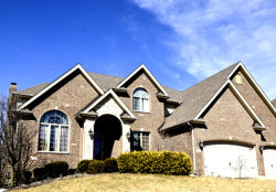 Photo of 10910 Sheridans Trail, Orland Park, IL 60467 (MLS # 10606853)