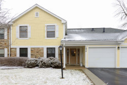 Photo of 1054 Driftwood Court, Unit Number C1, Wheeling, IL 60090 (MLS # 10608589)