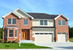 Photo of 881 E Writer Court, Vernon Hills, IL 60061 (MLS # 10609007)