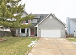Photo of 1331 Lawrence Court, Aurora, IL 60504 (MLS # 10609887)