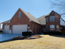 Photo of 12922 Tipperary Lane, Plainfield, IL 60585 (MLS # 10610676)