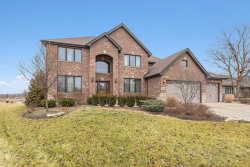 Photo of 11046 Garrett Drive, Orland Park, IL 60467 (MLS # 10612225)