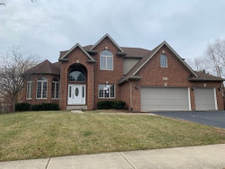 Photo of 5507 Kanlow Drive, Naperville, IL 60564 (MLS # 10612324)
